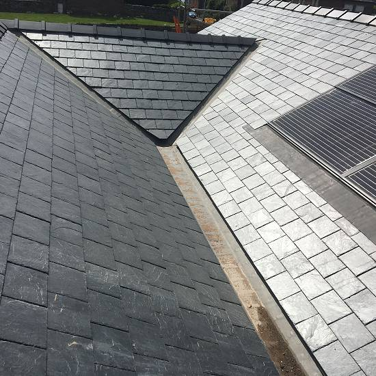 Roof and solar panels